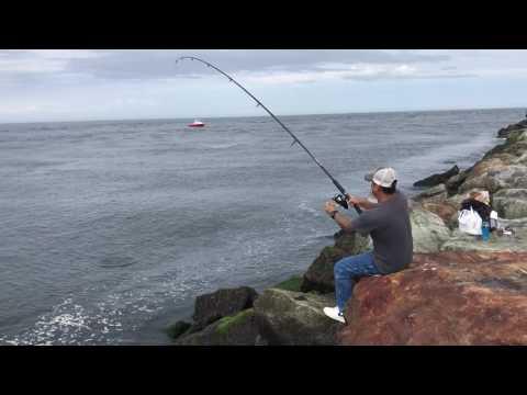 Striped Bass Plum Island MA