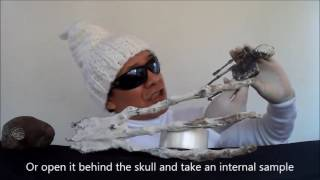 GIANT ASSEMBLED ALIEN HAND CLAW - Nasca mummy - Momias armadas de Nazca (Oficial video)