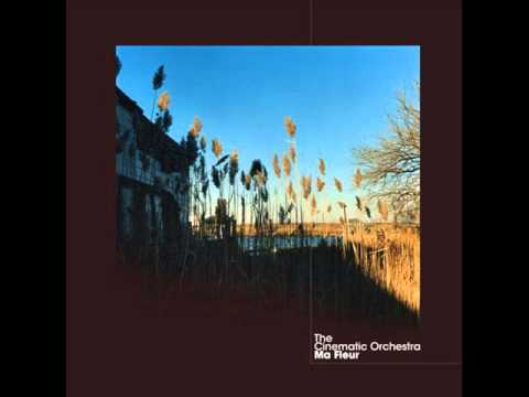 The Cinematic Orchestra  To Build a Home