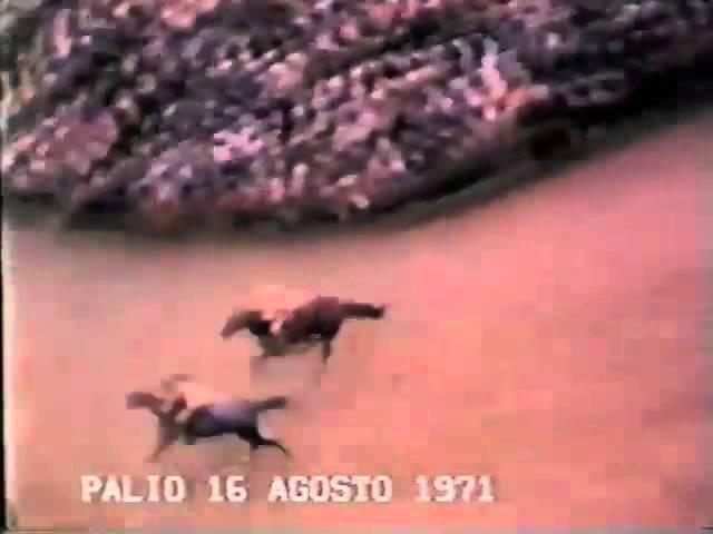 Palio 16 agosto 1971
