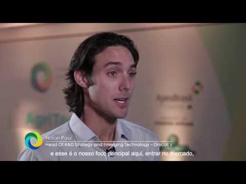 Corporate Venture In Brasil 2017