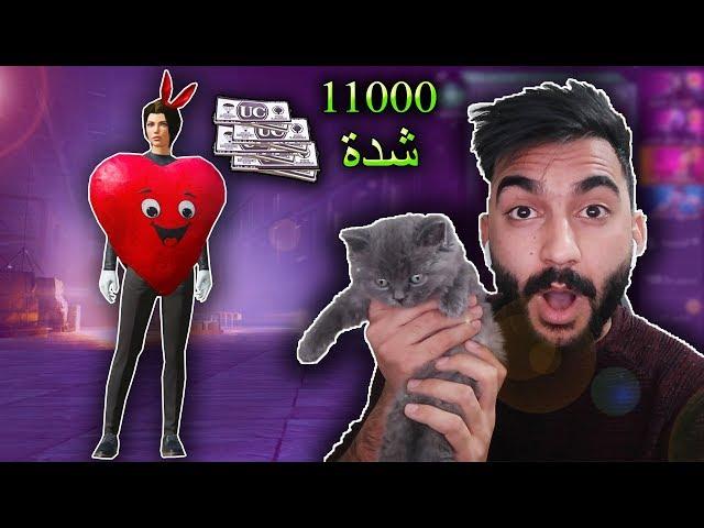 ببجي موبايل : تفجير بكجات عيد الحب مع قطتي الجديدة !!؟