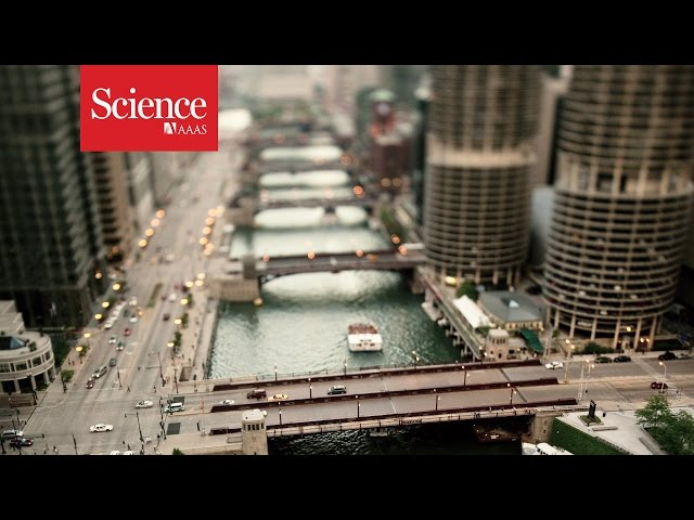 What happens to our planet as more people move into cities?