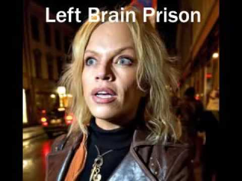 Left Brain Prison in Norway - David Icke