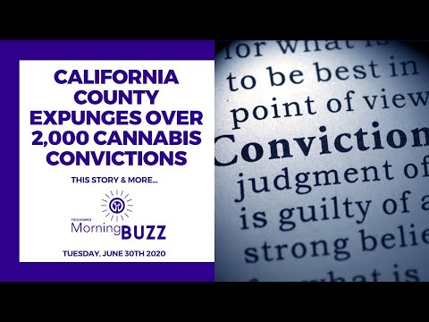 CALIFORNIA COUNTY EXPUNGES OVER 2000 CANNABIS CONVICTIONS | TRICHOMES Morning Buzz from YouTube · Duration:  4 minutes 9 seconds