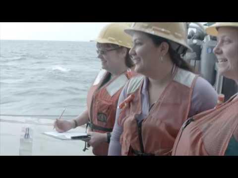 USF Marine Science Watershed Program