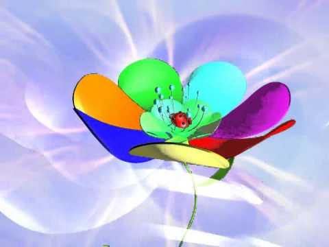 временем, картинка летящего лепестка горжусь всем