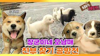 [TV 동물농장 레전드] '장군이네 오남매 친부 찾기' 풀버전 다시보기 I TV동물농장 (Animal Far…