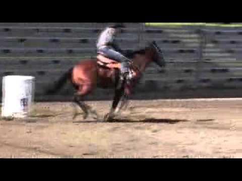 Winner Sept 2010 bcbra