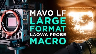 Large Format Macro with the Kinefinity MAVO LF and the Laowa 24mm Probe Lens MDEpicEpisodeS1E07