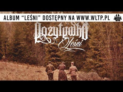 POZYTYWKA - 03. LEŚNI / LEŚNI | OFICJALNY ODSŁUCH