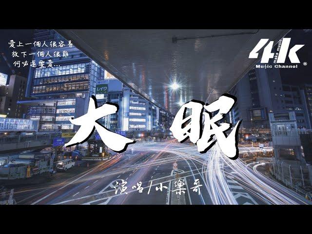 小樂哥 - 大眠(原唱:王心凌)【高音質 動態歌詞Lyrics】♫《都快忘了怎樣戀一個愛》xiao le ge  - da mian cover: Wang Xinling 翻唱歌曲