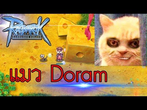 i Ragnarok Online - หลวงลุง - เผ่าอาชีพเผ่า แมว Doram Summoner - Sv.Chaos