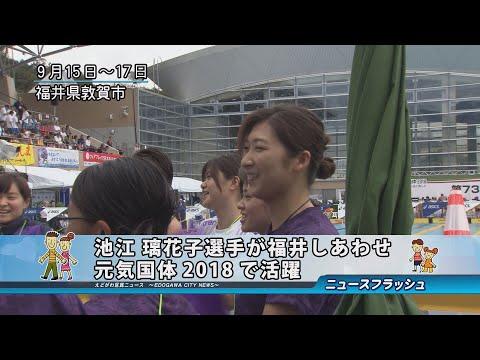 池江 璃花子選手が福井しあわせ元気国体2018で活躍