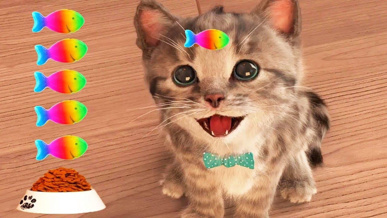Play Fun Pet Care Kids Game - Little Kitten My Favorite ...