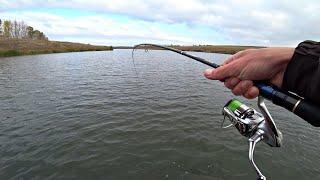Руки устали ОТ ТАКОГО КЛЁВА Поставил её и началось Рыбалка Осенью 2021