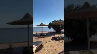 Погода Египет Шарм 05 февраля 2020 года регион Набк Бей отель Royal Albatros Moderna 5
