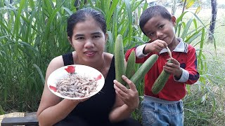 Asian food, Awesome  Cooking shrimp with marrow Recipe - Cook shrimp Recipes  - Village Food Factory