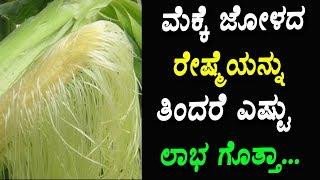 ಮೆಕ್ಕೆ ಜೋಳದ ರೇಷ್ಮೆಯನ್ನು ತಿಂದರೆ ಎಷ್ಟು ಲಾಭ ಗೊತ್ತಾ... ! | Kannada Health Tips |
