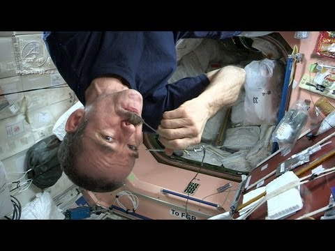Astronaut Chris Hadfield and Chef David Chang Test Gourmet S