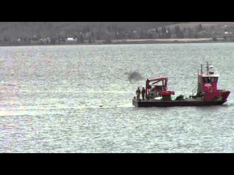 Cooke Aquaculture violates lease boundaries at salmon feedlots