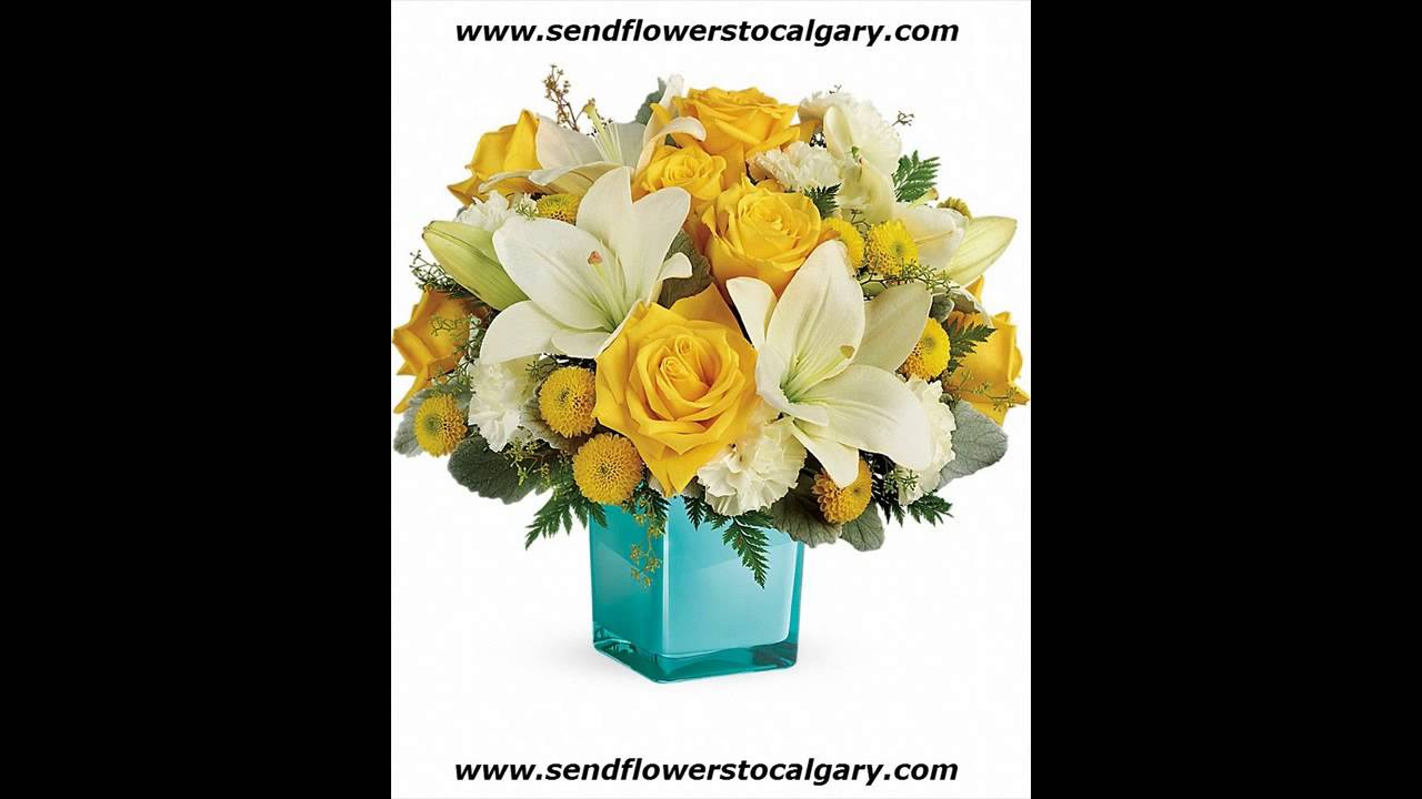 Calgary alberta flower shops youtube izmirmasajfo
