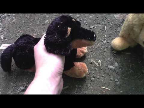 Fight for Survival Part 1 (A Stuffed Animal Movie)