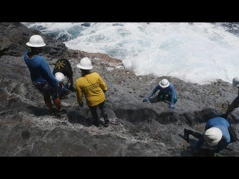 Video Stories | Voyage to Nihoa: Science at Sea