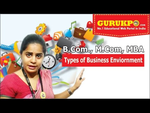 Types of Business Environment(Commerce and Management)(English)(Gurukpo)