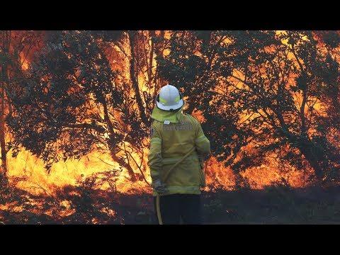 BERMCHTIGER GEGNER: Australier sind den Buschbrnden ausgeliefert