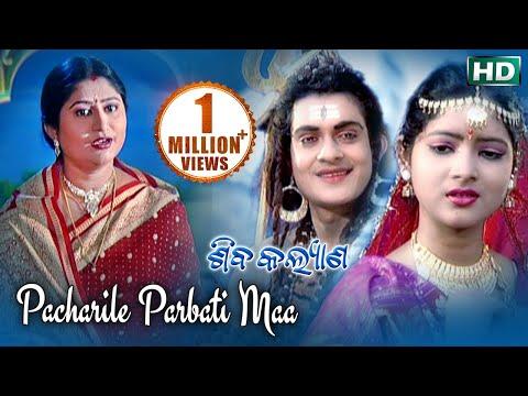 PACHARILE PARBATI MAA ପଚାରିଲେ ପାର୍ବତୀ ମା || Album-Shiba Kalyana || Namita Agrawal || Sarthak Music