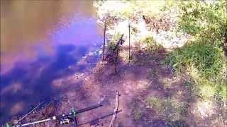 Сестрорецкий разлив. Рыбалка 25.05.2015.