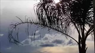 Arnaldo Baptista - Navegar De Novo / Te Amo Podes Crer (1974)