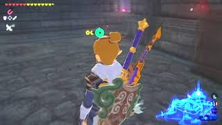 Zelda Botw Best Shield