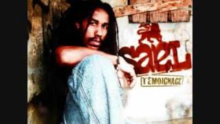 Sael - Maladive Attirance (Album Témoignage 2oo9) -=Promo Only Use=-