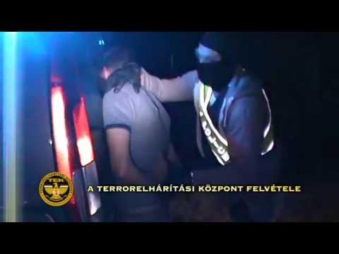 Észt feliratú, litván rendszámú autóban csempésztek afgánokat ukránok - a magyar TEK lecsapott rájuk