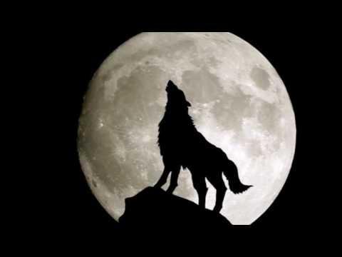Lycanthrope (loup-garou)- Les Différents types