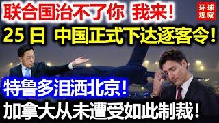 联合国治不了你,我来!25日中国正式下达逐客令!特鲁多泪洒北京!加拿大从未遭受过如此制裁!