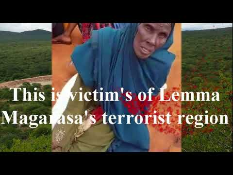 News UPDATE from Moyale Dawa Zone Ethiopian Somali Regional State