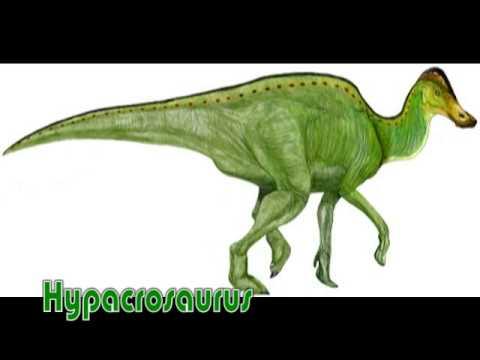 Ornithopods Dinosaurs - Slidelopedia