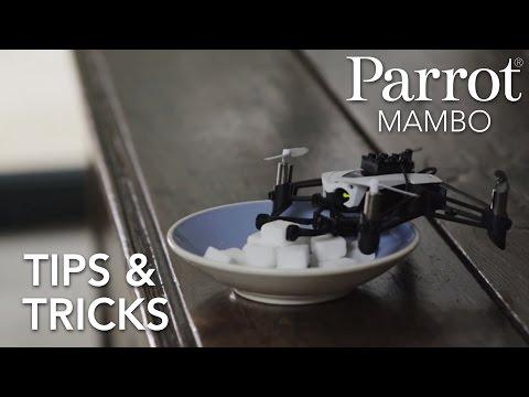 Parrot Minidrones - MAMBO - Tutorial #3 : Tips & Tricks