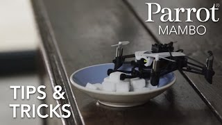 Parrot Minidrones - MAMBO - Tutorial #3 : Tips & Tricks