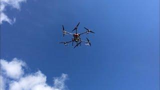 Нові технології стукають нам у двері. Десикація соняшника дроном #dji #десикація