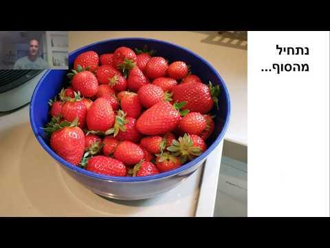 איך לגדל תות שדה אורגני בגינה | המידע המלא מחכה בפנים