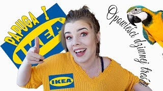 ODT  Mam pracować w IKEA?! Ratowanie PAPUGI i KOTA