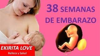 38 semanas de embarazo rls