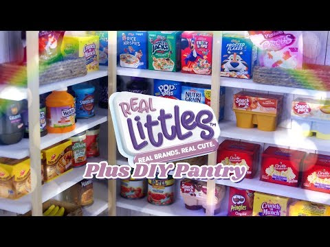 DIY - How to Make: Miniature Pantry PLUS Shopkins Real Littles Mega Haul