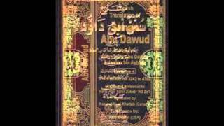 Sunan Abu Dawud  Sh/ Hassen Abdallah part 10