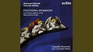 Canzoni et Sonate Sonata XVIII a 14, C 211