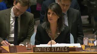 Nikki Haley vetoes UN resolution calling for withdrawal of Trump